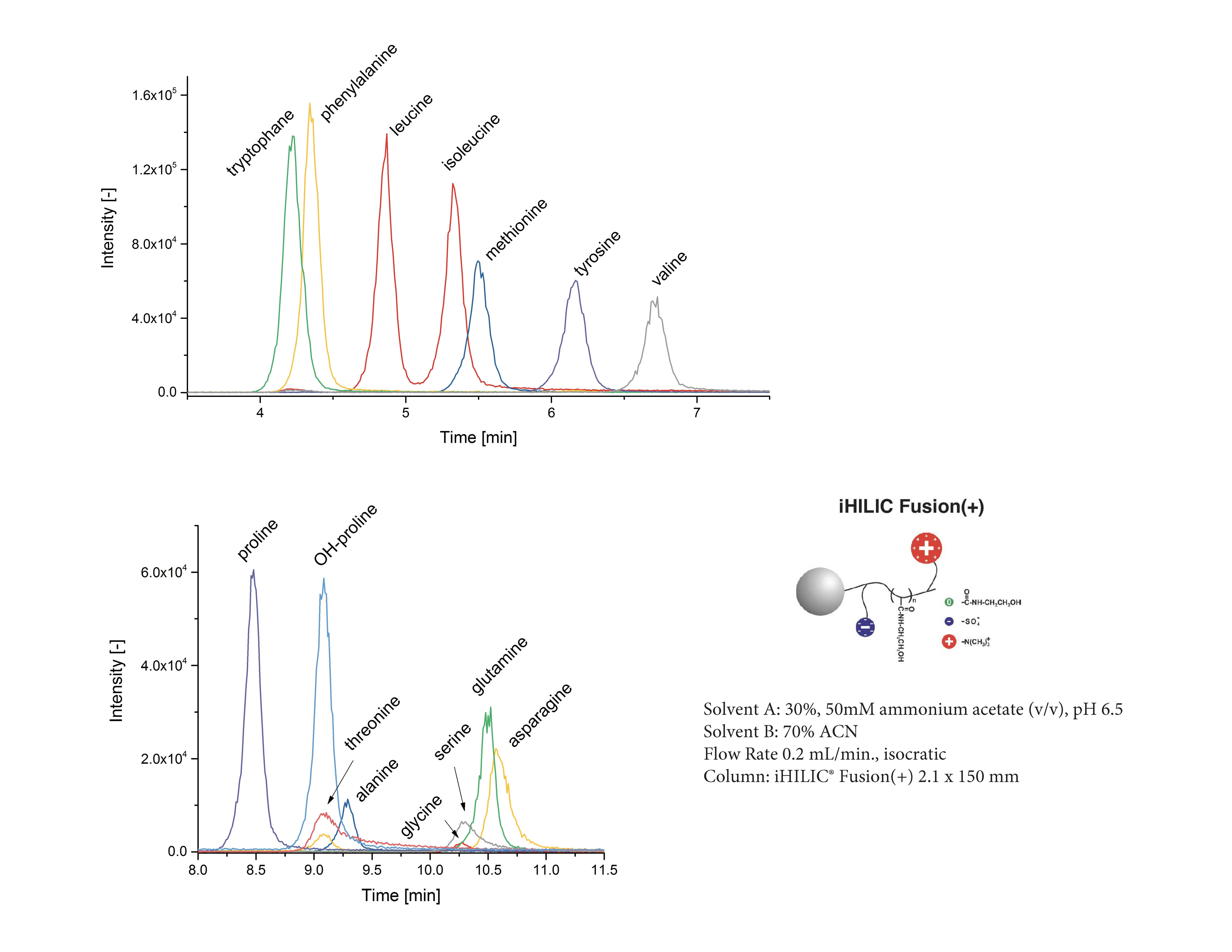 Underivatized Amino Acids Metabolomics LC/MS